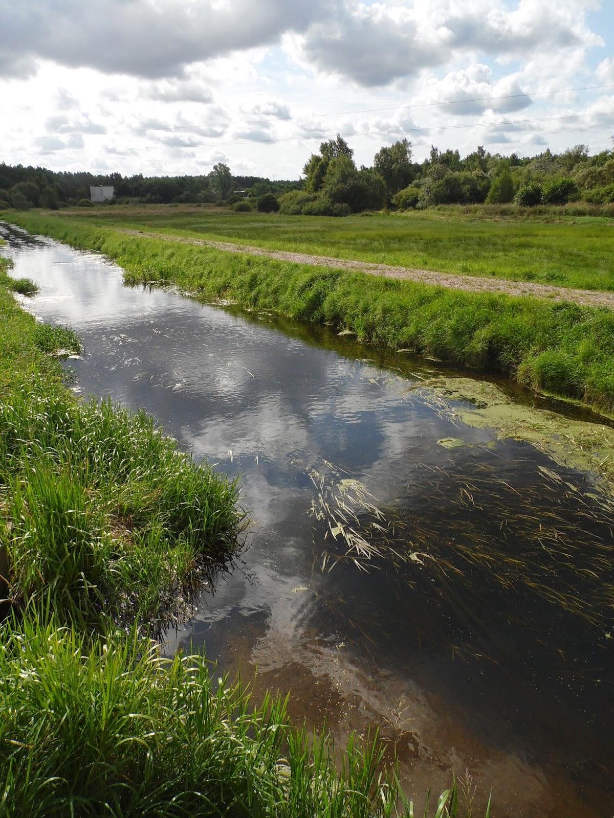 rzeka i łąka w Jastrzębiej Górze, przy drodze łączącej Strondowy Jar i Ostrowo