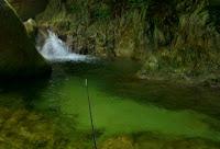 Reel Fishing Angler's Dream Wii