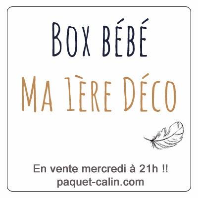 http://www.paquet-calin.com/boutique/box-bebe-deco/