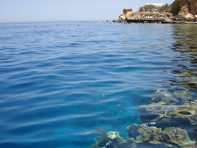 EGIPTO: Mar Rojo (Sharm el Sheik) en familia