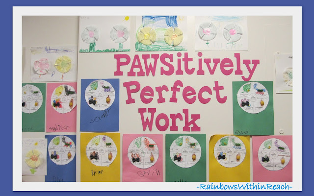 photo of: Bulletin Board: Pawsitively Perfect Work