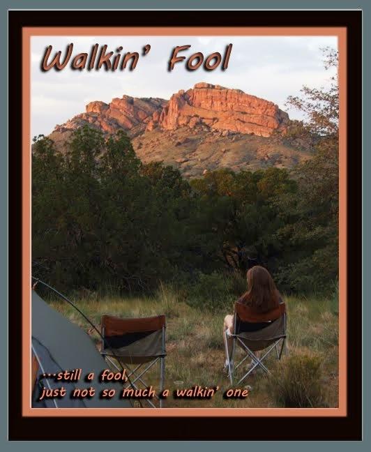 Walkin' Fool