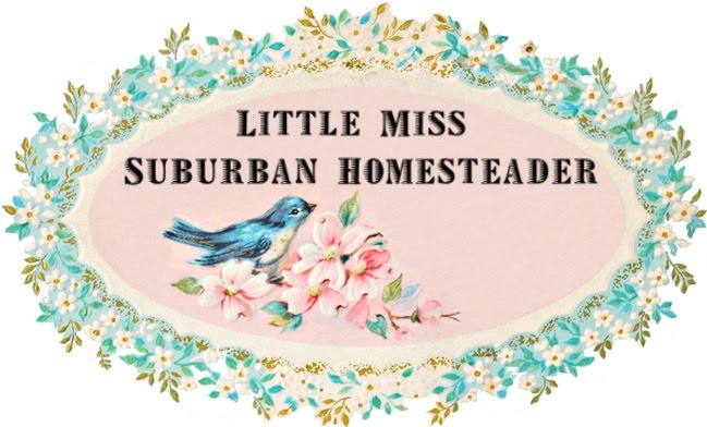 Little Miss Suburban Homesteader