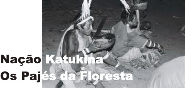 Nação Katukina