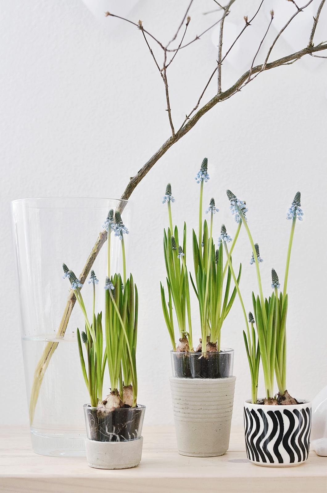 Vasen Aus Beton : nachmachtipp vasen aus beton sinnenrausch diy und interior blog ~ Sanjose-hotels-ca.com Haus und Dekorationen
