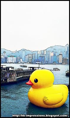 橡皮鴨游香港