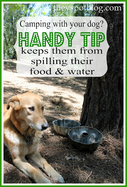 This handy trick can keep your dog from spilling their food and water while camping or on outdoor trips. #pet #tricks