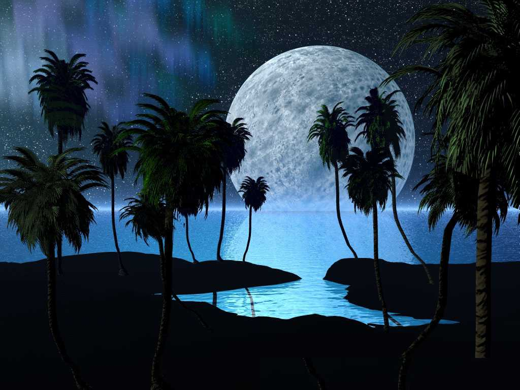 wallpapers full moon night - photo #30