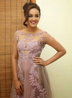 Seerat Kapoor Stills at Tiger Movie Audio Launch 10.jpg