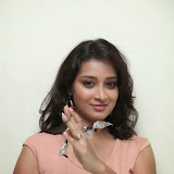 Bhanu Sri Hot Photos at Veedi Pourusham Movie Press Meet 34