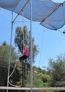 Tori climbing the rope to the catch bar on the flying trapeze.