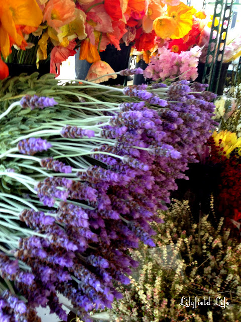 Flowers at Orange Grove markets