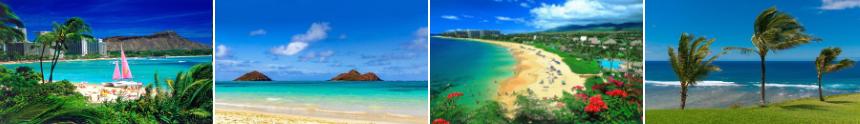 Hawaii MLS