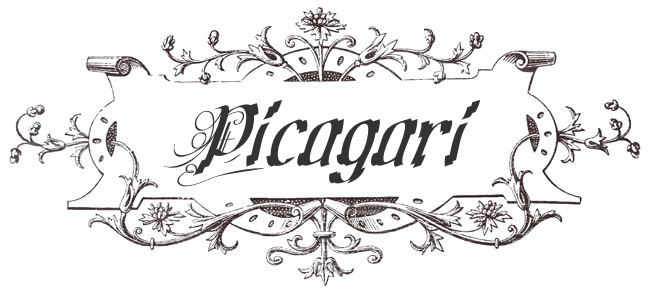 picagari