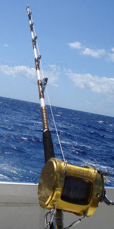 удилища для морской рыбалки с лодки
