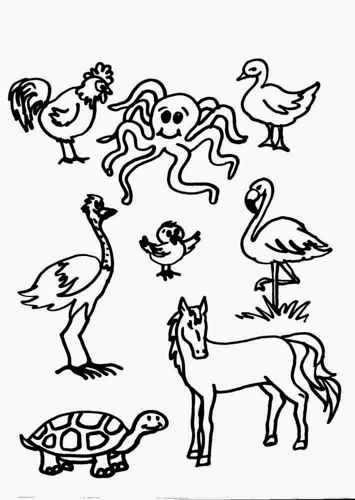 Disegni da colorare fattoria - Animali immagini da colorare pagine da colorare ...