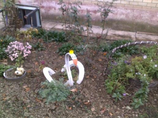 белые лебеди Крымска