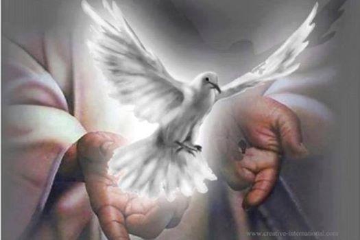 2 ΕΥΛΟΓΗΜΕΝΟΣ Ο ΕΡΧΟΜΕΝΟΣ ΦΩΝΗ ΘΕΟΥ