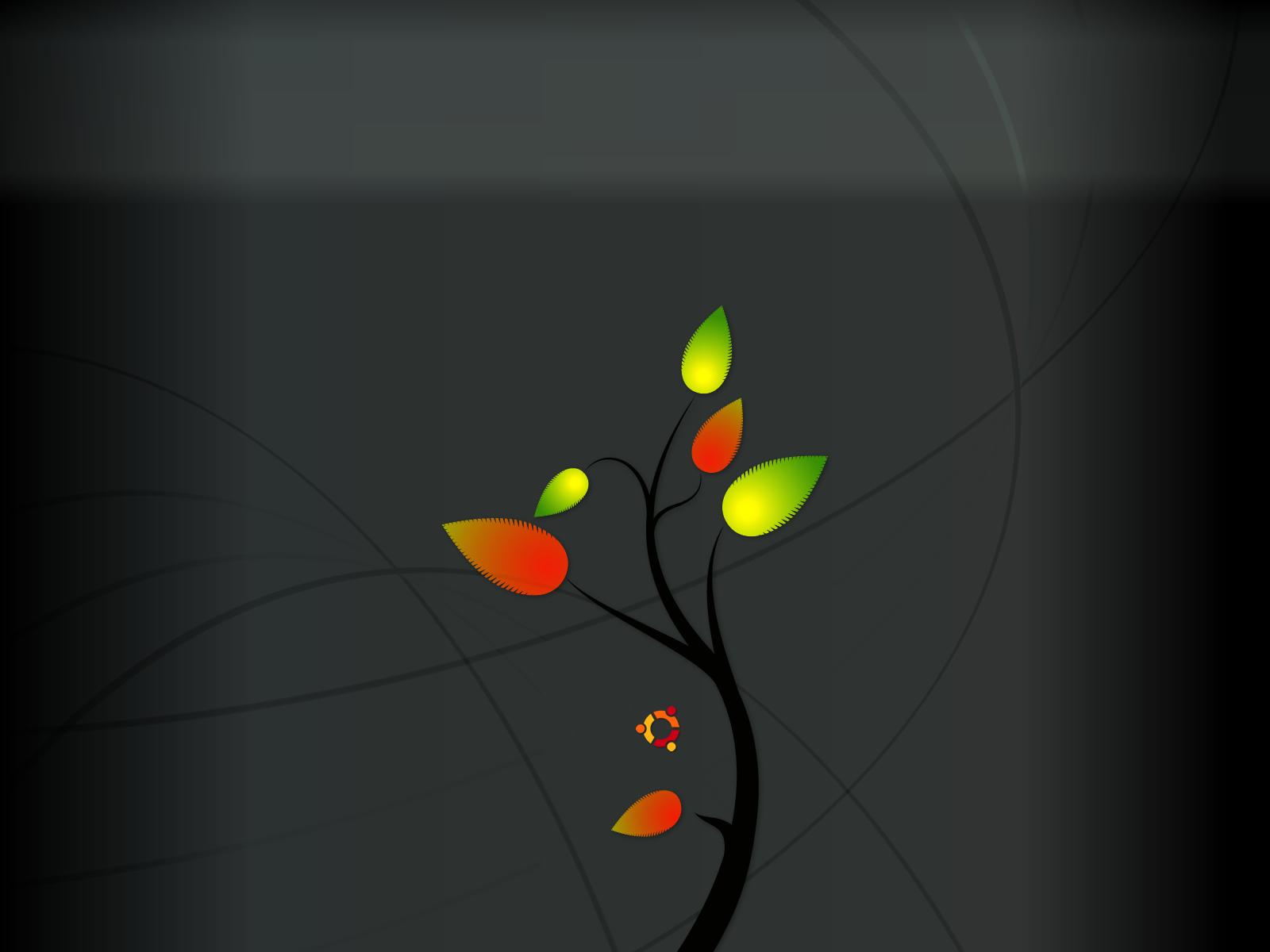 Ubuntu 3d Wallpapers Hd A1 Wallpapers