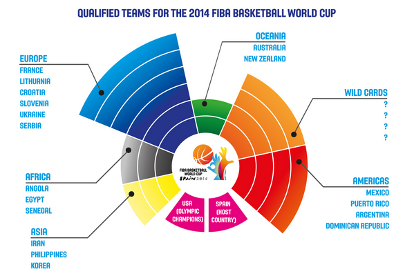 24 qualifiers of the 2014 FIBA Basketball World Cup