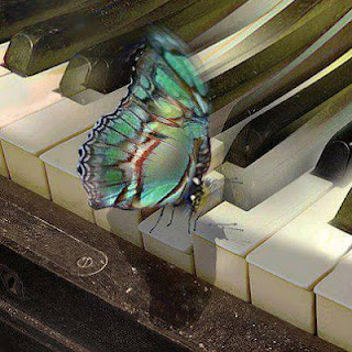 butterfly on piano