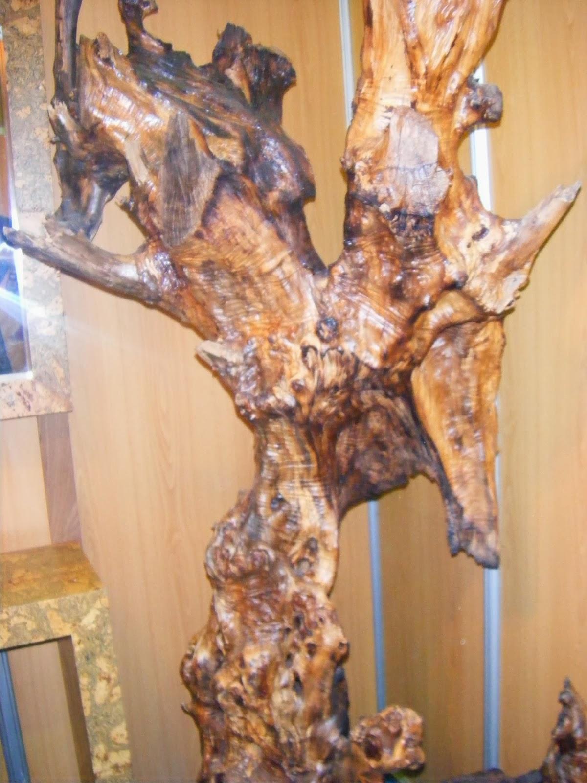 Tronco de árvore ardido trabalhado