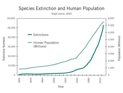 Cloning Extinct Animals