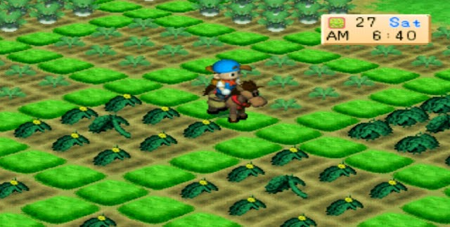 Daur hidup panen Harvest Moon back To Nature
