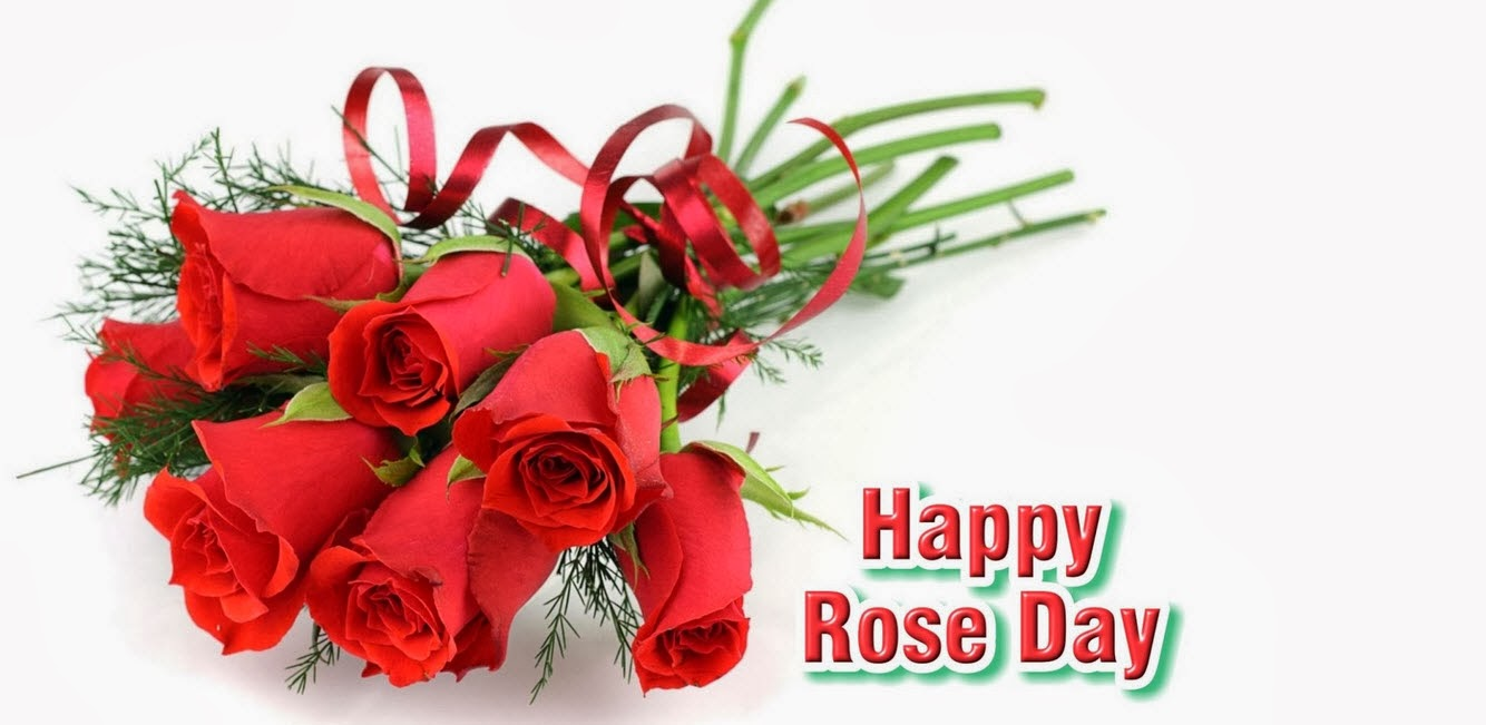 Happy Rose Day Image Wallpapers