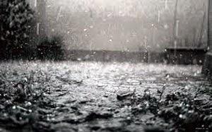 Thodupuzha, Idukki, Kerala, Rain, Heavy Rain.