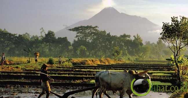 6. Gunung Merapi, Indonesia