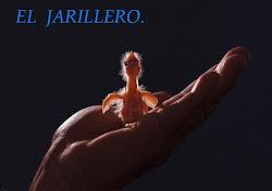 El Jarillero.