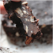 Raw cake brownie