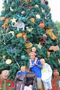 Disney World Day 2Animal Kingdom (img )