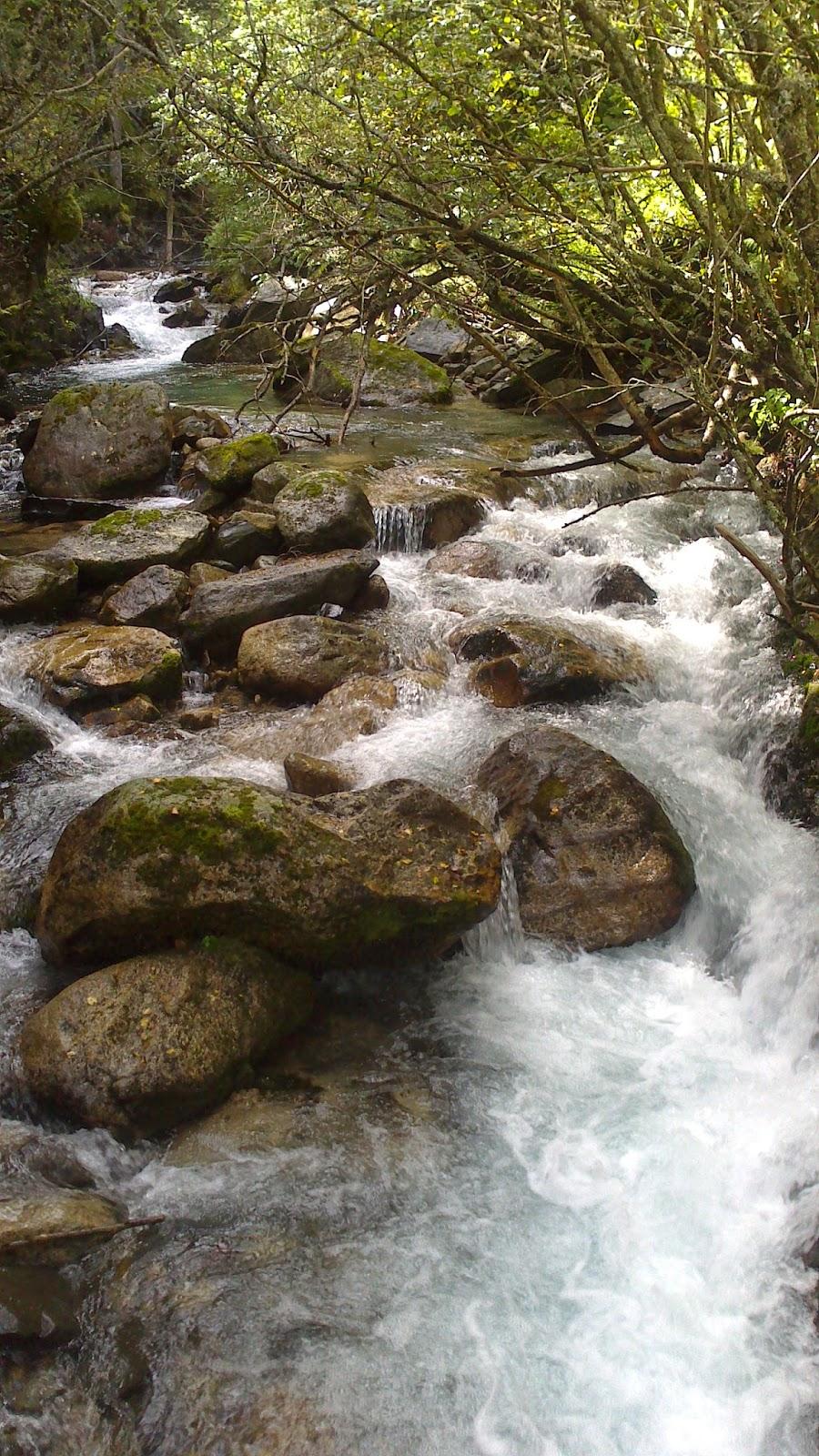 Riu al Parc Natural d'Aigüestortes