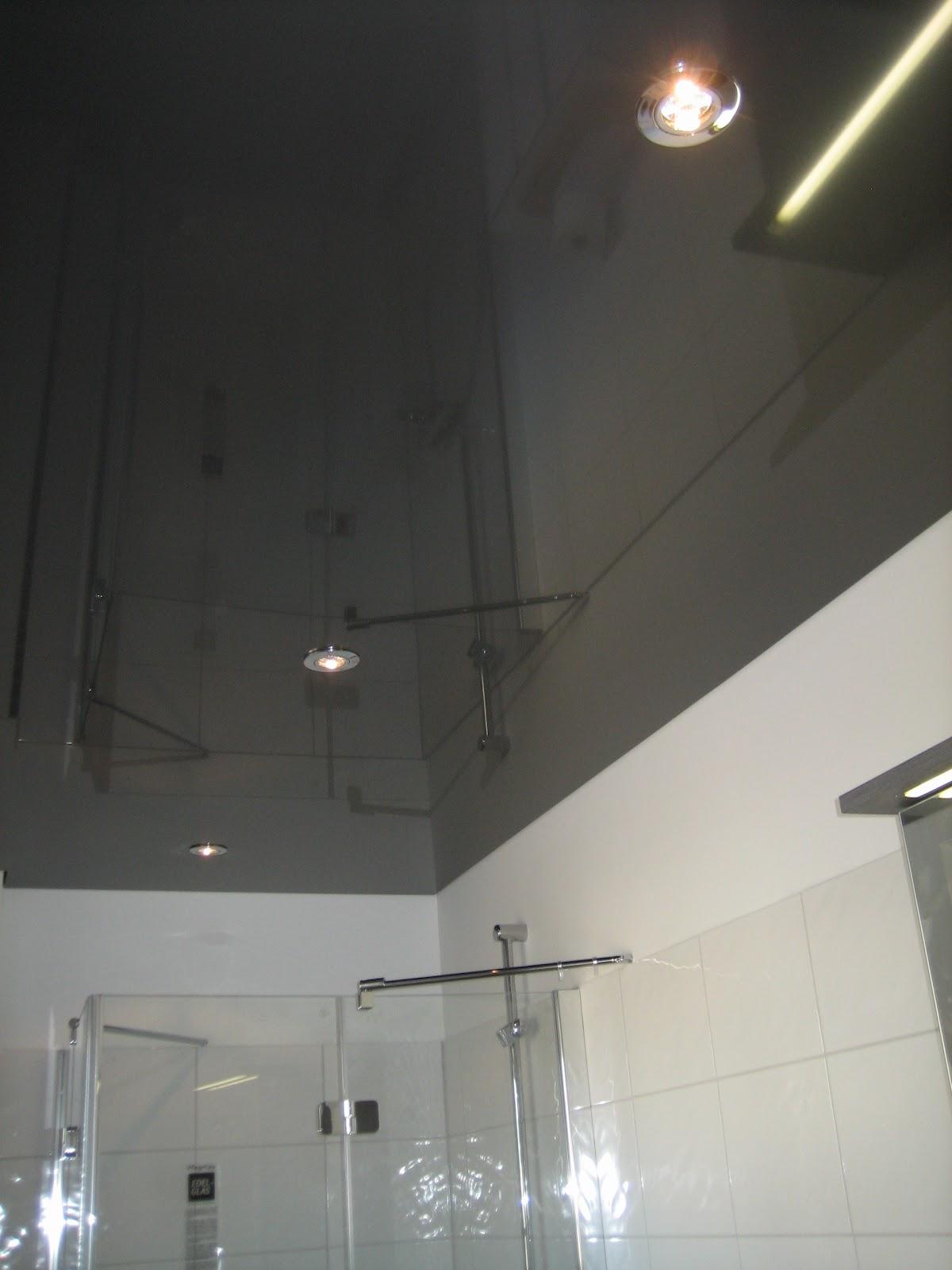 eco systemhaus in gehrden spanndecken im g ste bad u k che. Black Bedroom Furniture Sets. Home Design Ideas