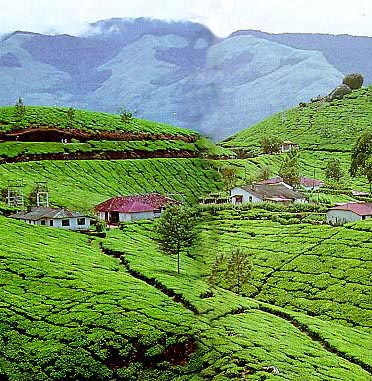 Beautiful Tourist Place In India
