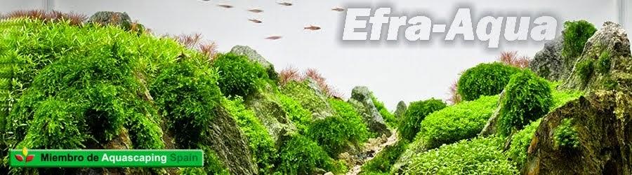 Efra-aqua