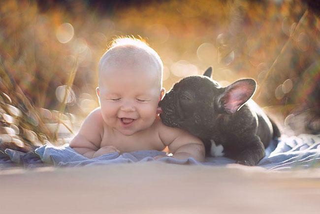 Retratos de un bebé y un bulldog que nacieron en el mismo día