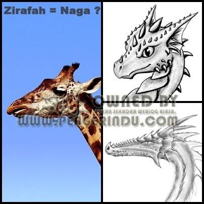 http://1.bp.blogspot.com/-X9tn17Vr3HM/TcF88ja_BqI/AAAAAAAACtU/jxHvO-FFMWo/s1600/ZIrafah-Dragon-pengerindu.jpg