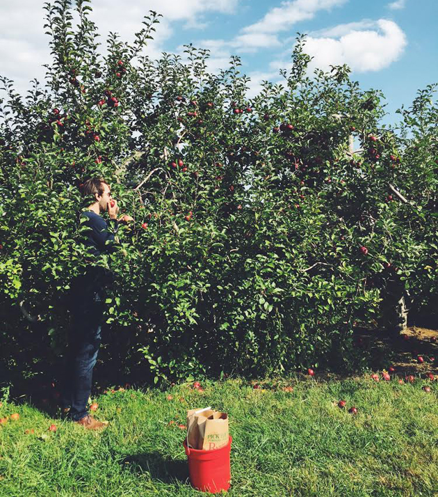 battleview orchards