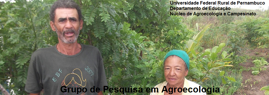 Grupo de Pesquisa em Agroecologia