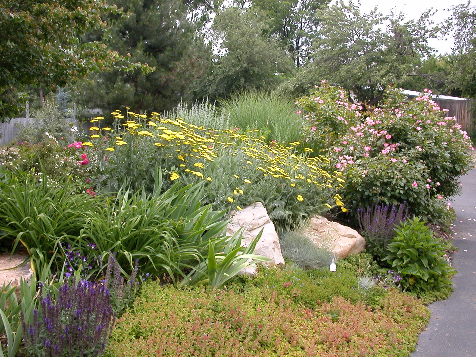 Green fork utah xeriscape a creative landscaping solution for Water garden landscaping