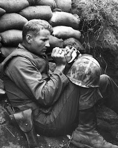 THE LOVING FRIENDSHIP BETWEEN SOLDIERS AND THEIR PETS