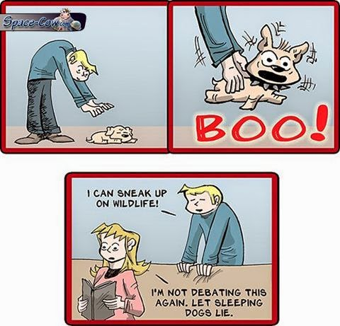 funny comics wildlife picture