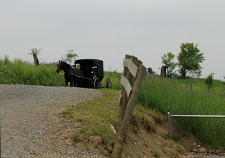Ohio 39 s amish country for Amish country things to do