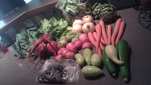 1st summer CSA box