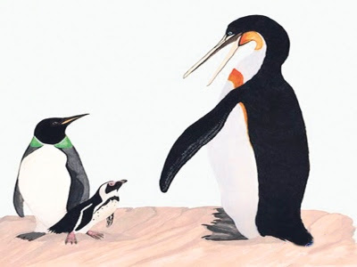 gambar penguin