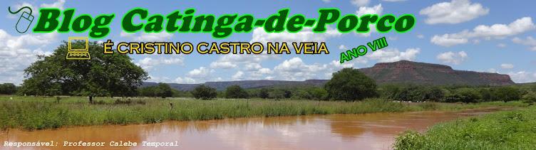 Blog Catinga-de-Porco