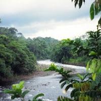rio que fluye